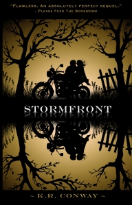 STORMFRONT second cover