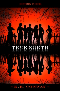 TRUE NORTH MIRRORED